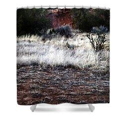 Coyote Shower Curtain by Joseph Frank Baraba