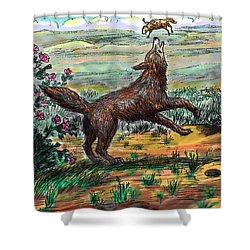 Shower Curtain featuring the drawing Coyote Joy by Dawn Senior-Trask
