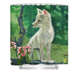 Coyote Pup Shower Curtain by Terry Lewey
