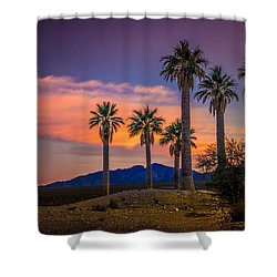 Coyote Springs Nevada Shower Curtain by Janis Knight