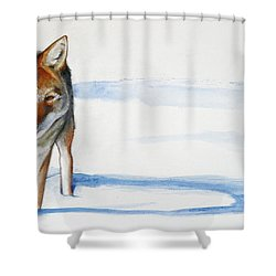 Coyote Trot Shower Curtain