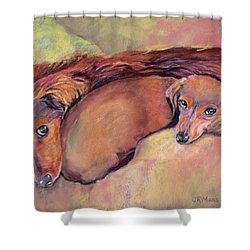 Cozy Dachshunds Shower Curtain by Julie Maas
