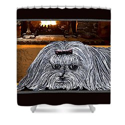 Shower Curtain featuring the drawing Cozy Maltese by Michelle Audas