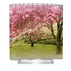 Shower Curtain featuring the photograph Crabapple Confection by Jessica Jenney