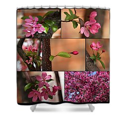 Crabapple Spring 1 Shower Curtain by Mary Bedy