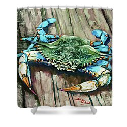 Crabby Blue Shower Curtain
