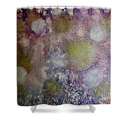 Cracked Lights Shower Curtain