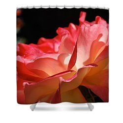 Cracklin' Rose Shower Curtain