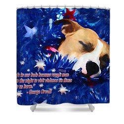 Shower Curtain featuring the photograph Cradled By A Blanket Of Stars And Stripes - Quote by Shelley Neff