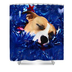 Shower Curtain featuring the photograph Cradled By A Blanket Of Stars And Stripes by Shelley Neff