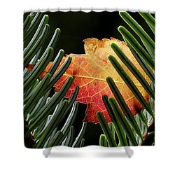 Cradled Shower Curtain