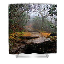 Shower Curtain featuring the photograph Craggy Gardens by Jessica Brawley