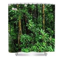 Cranberry Glades Boardwalk Shower Curtain