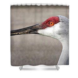 Crane Closeup Shower Curtain