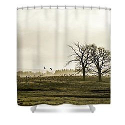 Crane Hill Shower Curtain by Torbjorn Swenelius