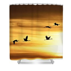 Shower Curtain featuring the photograph Cranes At Sunrise 2 by Larry Ricker
