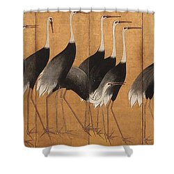 Cranes Shower Curtain by Ogata Korin