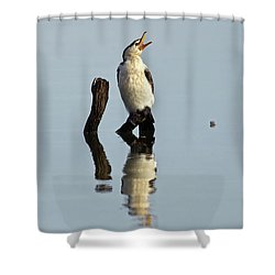 Cranky Cormorant Shower Curtain