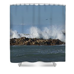 Crashing Waves And Gulls Shower Curtain
