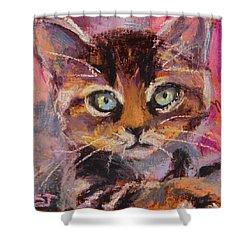 Crazy Cat Tabby  Shower Curtain