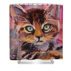 Crazy Cat Tabby  Shower Curtain