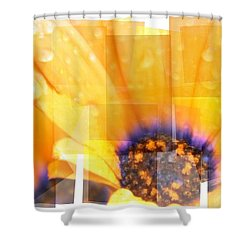 Crazy Flower Petals Shower Curtain by Amanda Eberly-Kudamik