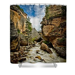 Crazy Woman Canyon Shower Curtain