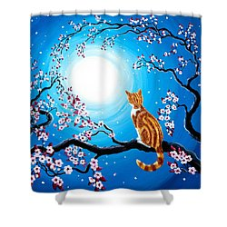 Creamsicle Kitten In Blue Moonlight Shower Curtain