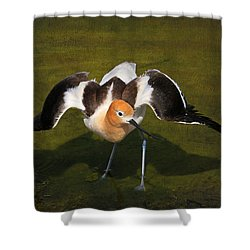 Creating A Diversion Shower Curtain by Donna Kennedy