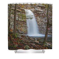 Creatures In The Mist Shower Curtain by Angelo Marcialis