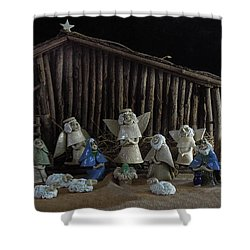 Creche Sraight On View Shower Curtain by Nancy Griswold