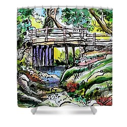 Creek Bed And Bridge Shower Curtain by Terry Banderas