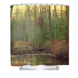 Creek Bed Shower Curtain