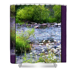 Shower Curtain featuring the photograph Creek Daisys by Susan Kinney
