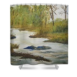 Shower Curtain featuring the painting Creek In The Catskills by Ellen Levinson