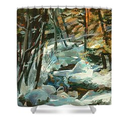 Creek In The Cold Shower Curtain