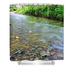 Creek Of Many Colors Shower Curtain by Donna Blackhall