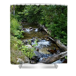 Shower Curtain featuring the photograph Creek On Mt. Spokane 1 by Ben Upham III