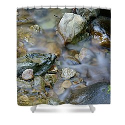 Creek On Mt Tamalpais Shower Curtain
