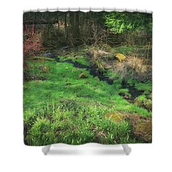 Creek - Spring At Retzer Nature Center Shower Curtain by Jennifer Rondinelli Reilly - Fine Art Photography