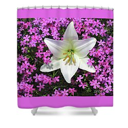 Shower Curtain featuring the photograph Creeping Fuchsia Phlox With Lily by Nancy Lee Moran