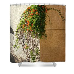 Creeping Plants Shower Curtain