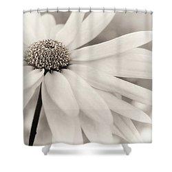 Shower Curtain featuring the photograph Creme Fraiche In Black And White by Darlene Kwiatkowski