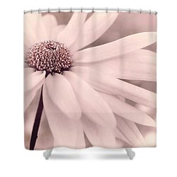 Shower Curtain featuring the photograph Creme Fraiche With Hint Of Pink by Darlene Kwiatkowski