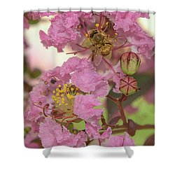 Crepe Myrtle And Bee Shower Curtain by Olga Hamilton