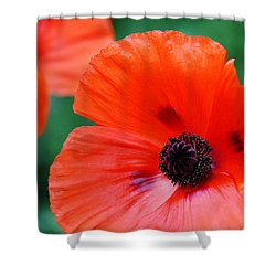 Crepe Paper Petals Shower Curtain