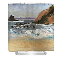 Crescent Beach At Laguna  Shower Curtain