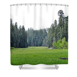 Shower Curtain featuring the photograph Crescent Meadow by Kyle Hanson