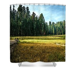 Crescent Meadows Sequoia Np Shower Curtain