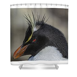 Crest Shower Curtain